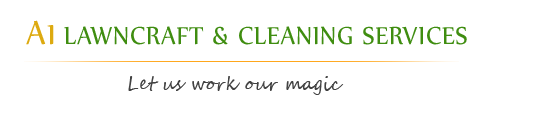 Sydney cleaning service